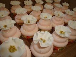 mini cupcakes $3.50 each