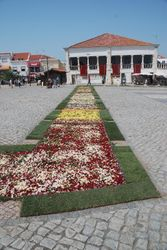 Petals and branches laid out ready for the procession in Sitio