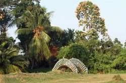 Georgetown Botanical Gardens