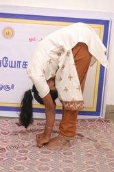Padha Hasthasanam