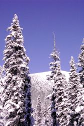 Akamina Snow 2