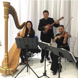 Harp, Ukelele, Violin Trio