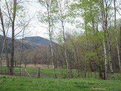 North Pasture 4-19-10