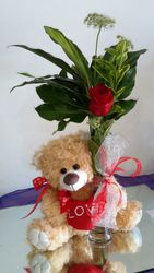 Teddy bear with roes bud vase