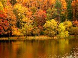 Pine Lake 2003-08c