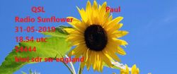 Sunflower Radio