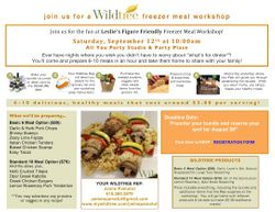 Wiltree Freezer Meal Workshop
