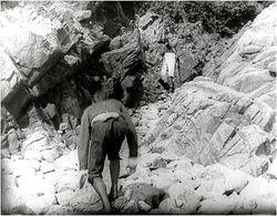 Et budskab til Napoleon paa Elba 1909