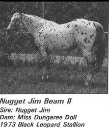 Nugget Jim Beam II