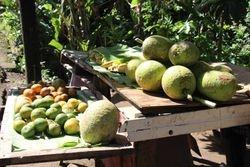 Zeilvakanties in de Carieb/Caribbean aan boord van de traditionele schoener de Horta