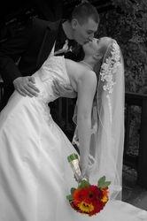 Fall Wedding 10/2009-Rancho San Rafael, Honey's Garden