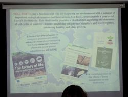 Claudia Perini on soil biota and innovative forest management: Life Project