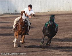 Outrider and Loose Horse