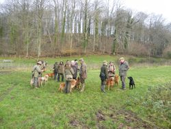 Open field trial at Horningsham 20th Dec 2011