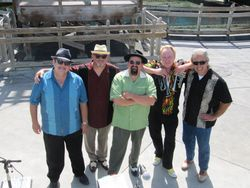 The Big Fat Steve band!!