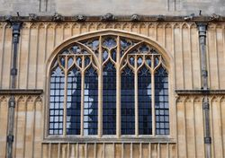 Window, Bodleian Library, Oxford