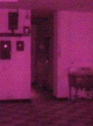 Infrared photo #1 unenhanced