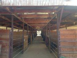 The Barn, 21 16x16 stalls