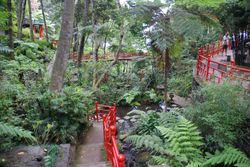 The Monte Palace tropical gardens in Funchal
