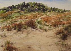 Dunes - Uphill