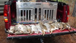 1 FEB 2011 HUNT IN COOSA