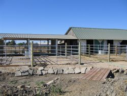 THE NEW BARN AND POND