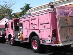 Pink Heals of SW Florida