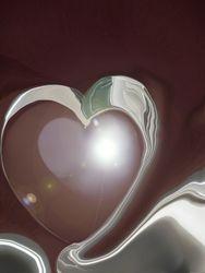 Les cygnes de l'amour