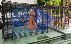"36"" American style lobster trap"