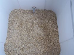 Grain in the Tun