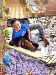 Evan on puppy duty