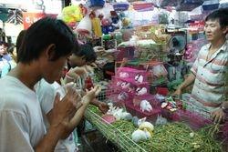 Bangkok Chatachuk Market 4