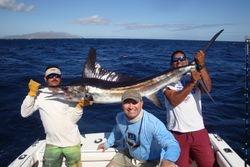 Mexico- Marlin