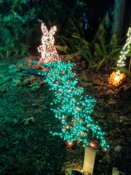 Bunny at the Garden D'lights in Bellevue