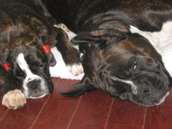 Madi and Elena ,,sleeping