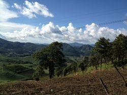 Maehongson Province