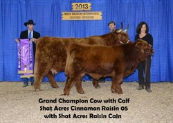 Grand Champion Cow with Calf
