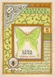 Natural Elements: Air