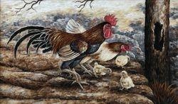 Cock Family