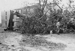 1940 hurricane damage on St. Helena Island