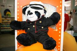 Panda looking smart in his Marines outfit