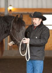 Jeff working with Fresian gelding