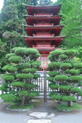 Pagoda & Trees, Japanese Tea Garden