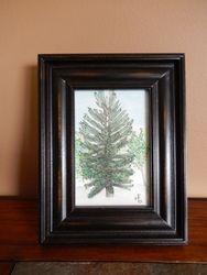 Harmer Rd Tree, NB, 6x4 $75