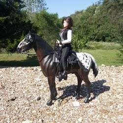 saddle set 92