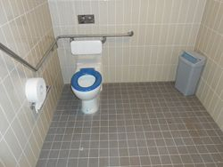 Disabled WC