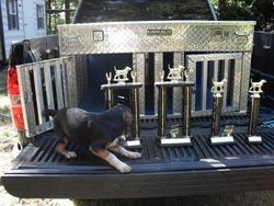 Run 'Em Down Kennels Trophies