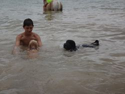 Oakley swimming with his boy!