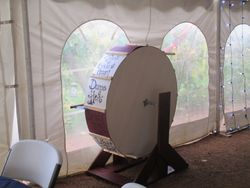 kissing wheel spinning game made by brides father.