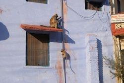 Bundi, India 5